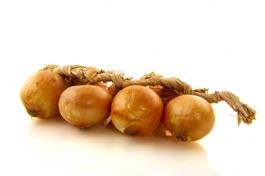 Roscoff onion braids France