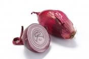 Tropea sweet onions Italy